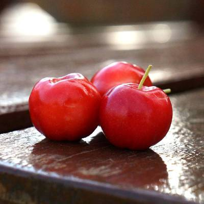 Acerola : complément alimentaire riche en vitamine C